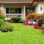 Commercial Landscaping Service in Columbia Md